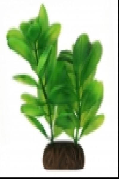 """Растение 1363 """"Самолюс"""" зеленый, 100мм, (пакет)"""