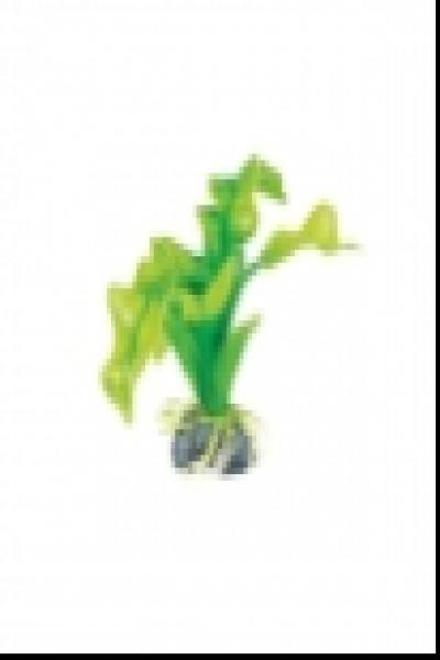 """Растение 1314 """"Апоногетон"""" зеленый, 100мм, (пакет)"""